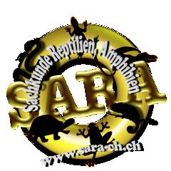 sara-ch